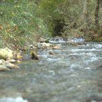 Quaryat Dillar presenta un nuevo sistema de sostenibilidad medioambiental mediante el ahorro de agua. Este permite reutilizar el agua proveniente del lavado de la aceituna, para regar los olivos